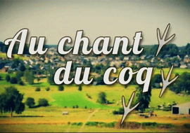 Au Chant du Coq - Vive les chevauxde trait!